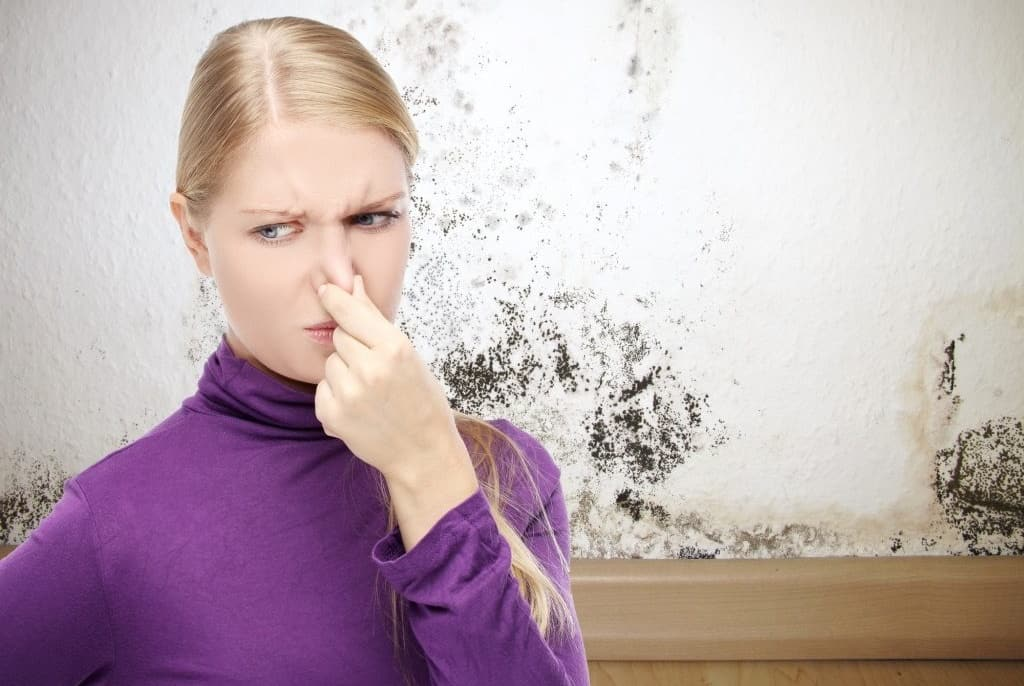 LHR plumbing and heating, new hamshire manchester plumber, hvac manchester nh, how to get rid of that musty smell